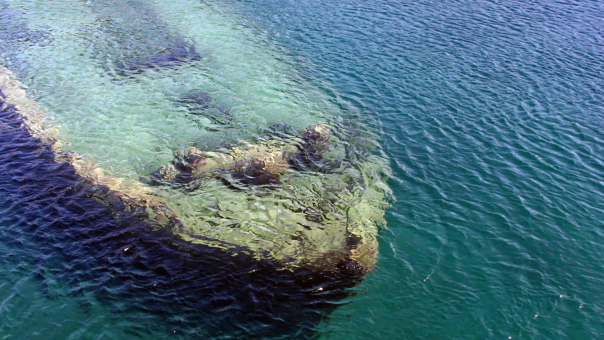 Best Underwater Metal Detector Quality Options Plumb The