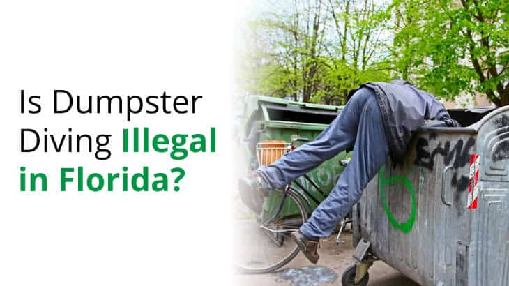 We explore the question, is it illegal to dumpster dive in Florida?