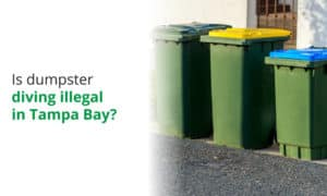 Is it illegal to dumpster dive in Tampa Bay? We explore local laws and ordinances on the issue.