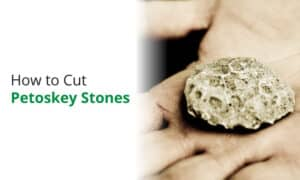 A detailed guide on how to cut Petoskey stones.