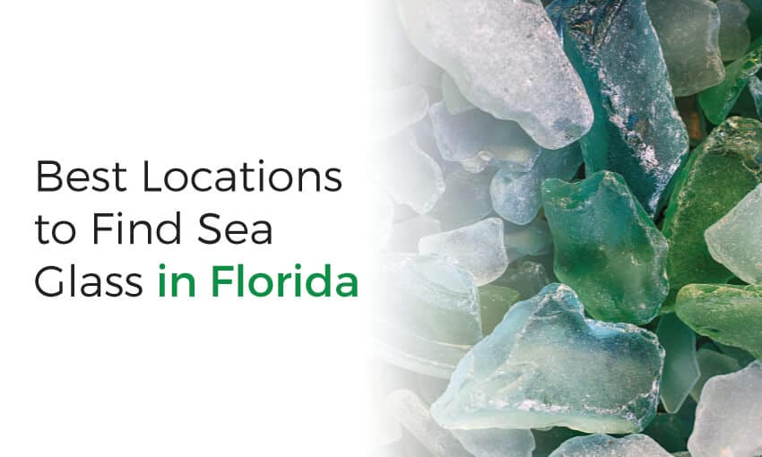 A collection of the best spots to find sea glass in Florida.