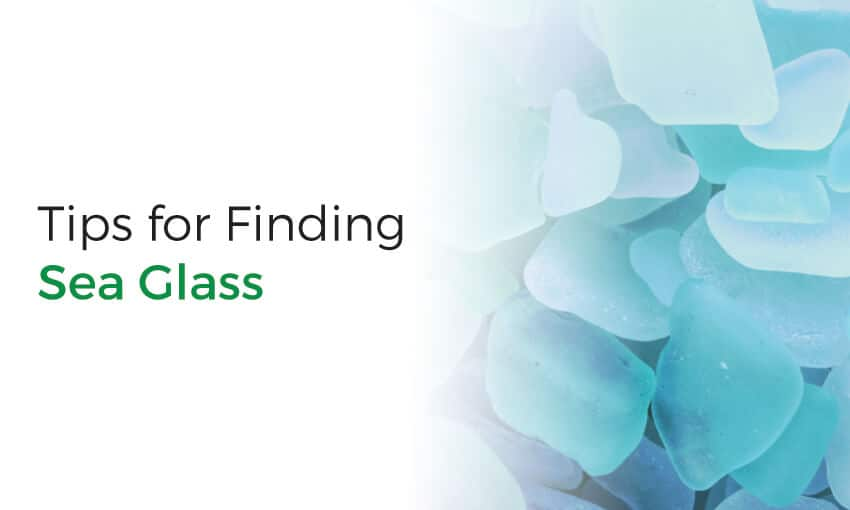 A collection of sea glass finding tips