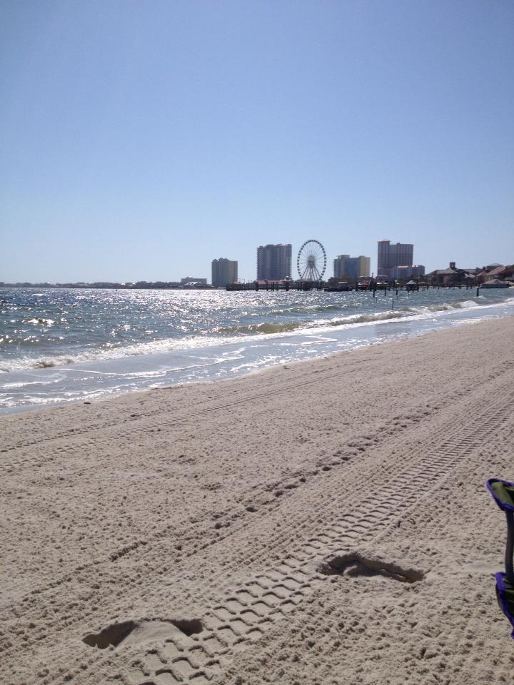 Beach with ocean pier behind